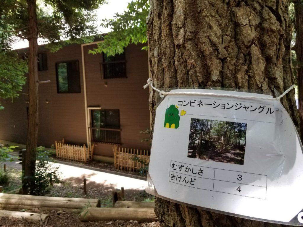 藤沢少年の森難易度