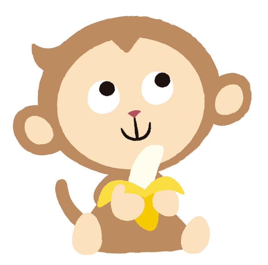 志村動物園、猿